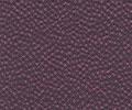 P-723 しおん<紫苑>